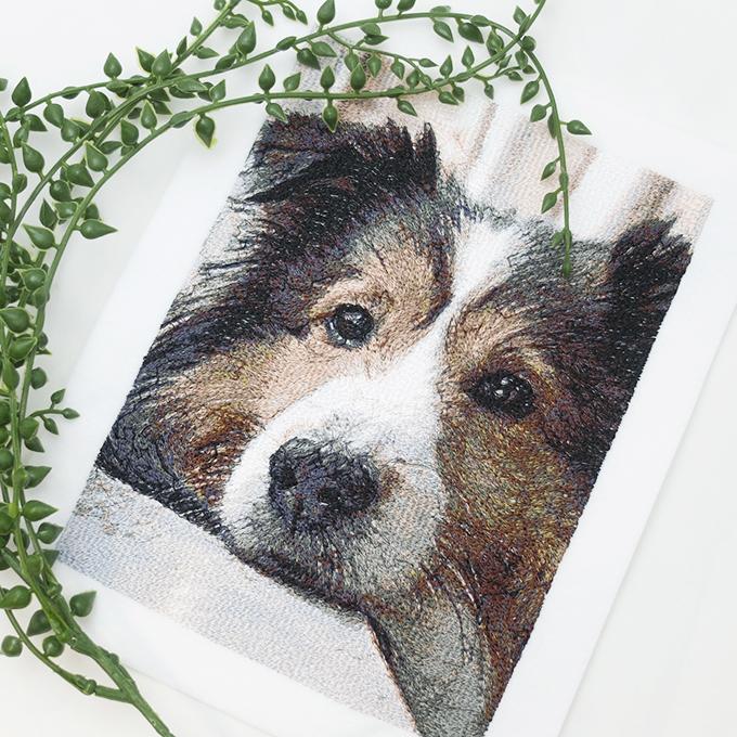 フォト刺繍N12 ペット 犬
