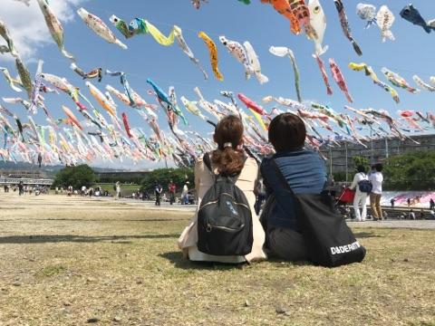 こいのぼりフェスタ1000 芥川桜堤公園