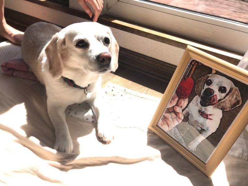 フォト刺繍 愛犬 レモンビーグル