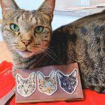 フォト刺繍 ワッペン 猫 スマホケース